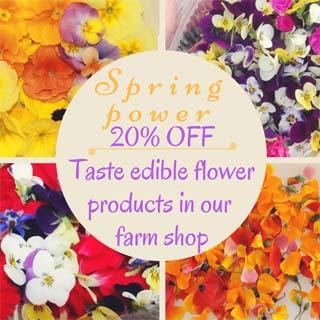 Offerta fiori commestibili